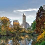 Central Park foliage photo-walk, Nov 2009 – 10