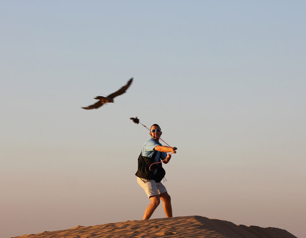 Falconry-Experience-(6)