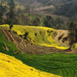 Nepal---DofE-Gold-5