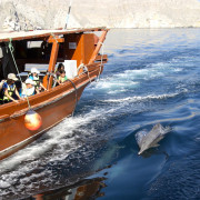 North-Star-Musandam-6