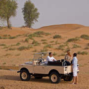 Vintage-Land-Rover-Fleet-(15)