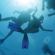 Saturday_Dive_3