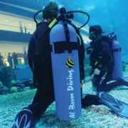 Shark_Dive_3