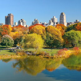 Lake and Autumn foliage with apartment buildings in Central Park of midtown Manhattan New York City