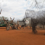 elephant snares