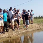 Ebro Delta 2