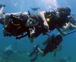 Saturday Dive Club in Fujairah - Main