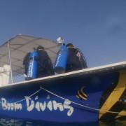 Saturday_Dive_2